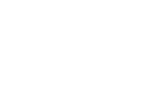 NEVO_Logoschrift-weiß